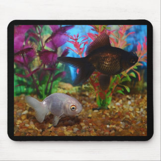 Fancy Goldfish Lionhead Black Moor Mouse Pad