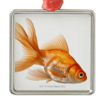 Fancy Goldfish Metal Ornament