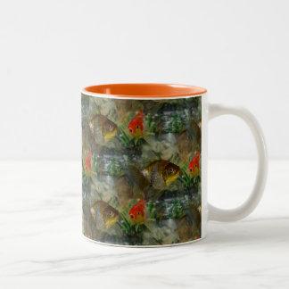 Fancy Goldfish Shimmer Two-Tone Coffee Mug