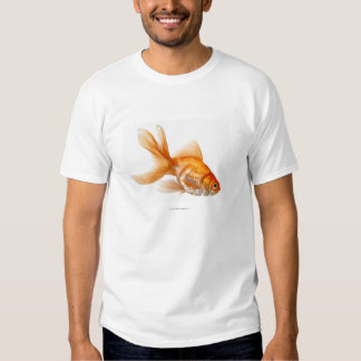 Fancy Goldfish Shirts