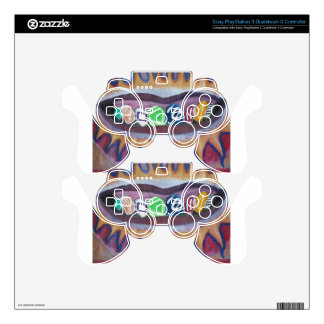 fancy grill skin for PS3 controller