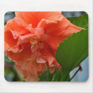 Fancy Hibiscus Mouse Pad