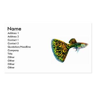 Fancy Male Guppy Profile Card