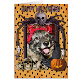 Fancy - Norwegian Elkhound - Salsman Greeting Card