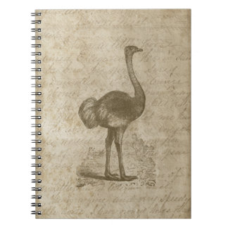 Fancy Ostrich Script Vintage Paper Notebook
