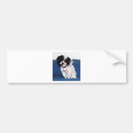 Fancy Parti Toy Poodle Portrait Bumper Sticker