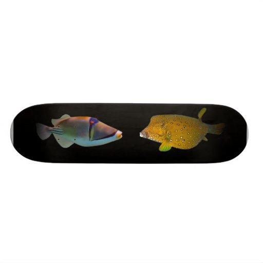 Fancy pez tablas de patinar