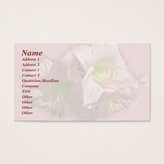 Fancy Pink Daylilies Business Card
