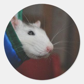 Fancy rat classic round sticker