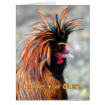 Fancy Rooster Happy Birthday Humor BIG SIZE Greeting Card
