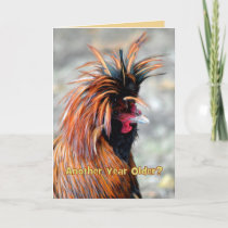 Fancy Rooster Happy Birthday Humor Card