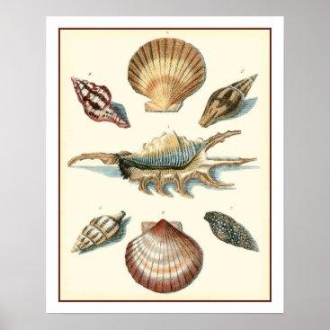Beach Themed Fancy Shell Beach Poster