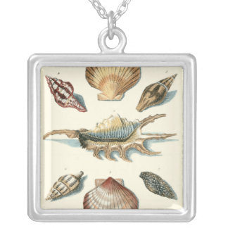 Fancy Shell Beach Silver Plated Necklace