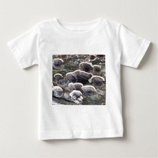 Fanfarria Tshirts