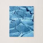 fango azul puzzles con fotos