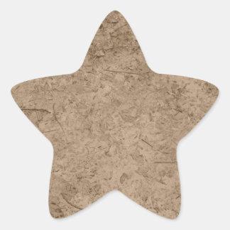 Fango. Tierra fangosa de Brown Calcomania Forma De Estrella Personalizada