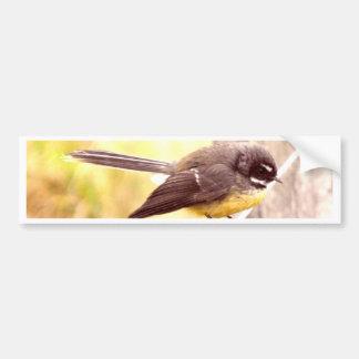 Fantail Bumper Sticker