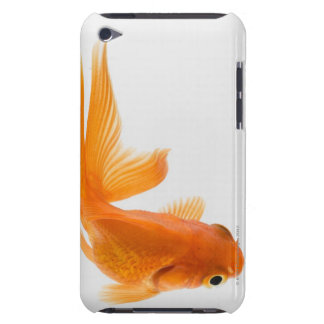 Fantail goldfish (Carassius auratus) 2 Barely There iPod Cover