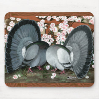 Fantail Pigeons Matched Pair Mouse Pad