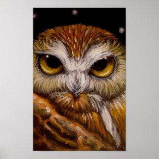 FANTASE SAW-WHET OWL Poster