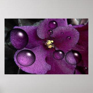Fantasía de la violeta africana póster