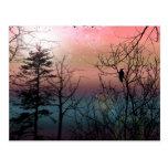 Fantasía gótica del paisaje de la soledad de la pu tarjetas postales
