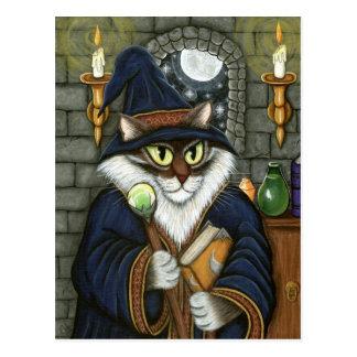 Fantasía mágica del hechicero del gato del mago tarjeta postal