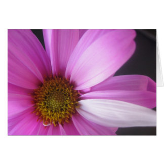 Fantasía rosada - Notecard Tarjeta Pequeña