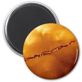 Fantasia Wire in Orange Magnet