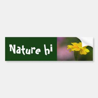 fantasies in yellow car bumper sticker