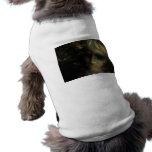 Fantasma Vision Ropa Para Mascota