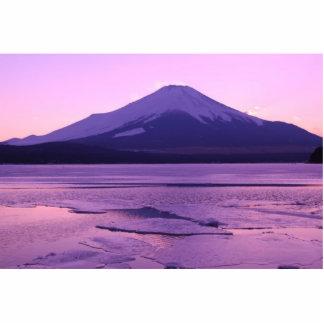 Fantastic Fuji Statuette