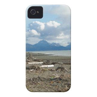 Fantastic Homer Alaska Beach Blackberry Case