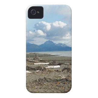 Fantastic Homer Alaska Beach iPhone 4 Cover