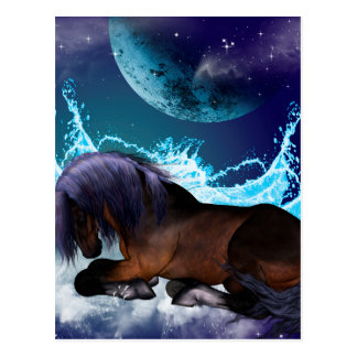Fantastic horse postcard
