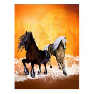 Fantastic horses postcard