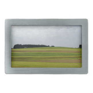 Fantastic Landscape Austia 05 Rectangular Belt Buckle