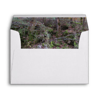 Fantastic Landscape Austia 14 Envelope