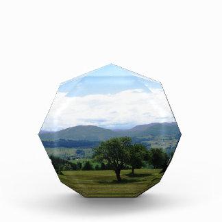 Fantastic Landscape Austria 04 Award