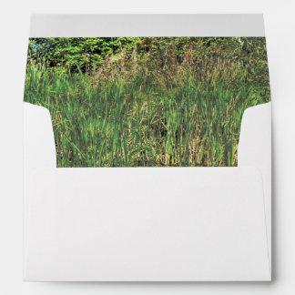 fantastic landscape Austria 22 Envelopes