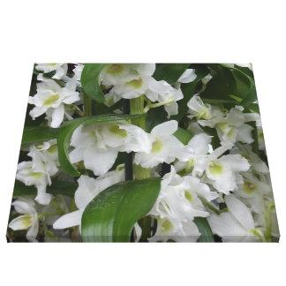 Fantastic white blossoms canvas print