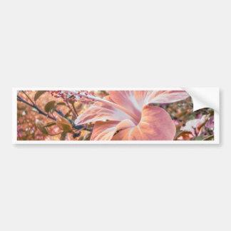Fantasy Colors Hibiscus Flower Digital Photography Car Bumper Sticker