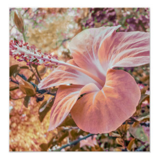 Fantasy Colors Hibiscus Flower Digital Photography Poster