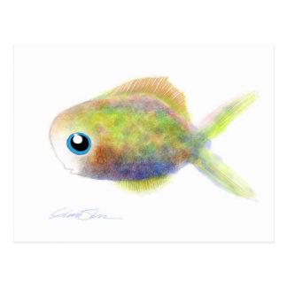 Fantasy Fish: The Blue-Eyed Boy Postcard