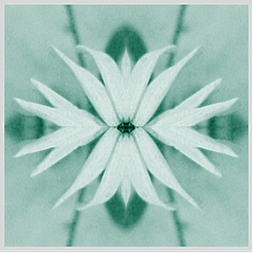 Fantasy Flower Plant Acrylic Cut Outs