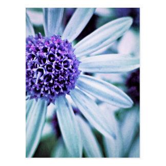 Fantasy Flowers in purple Postcard