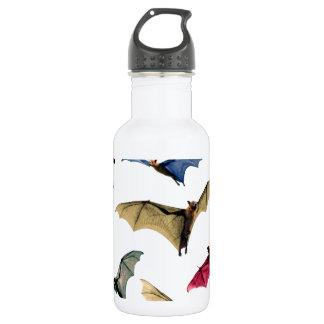 Fantasy flying fox fruit bats in sky stainless steel water bottle
