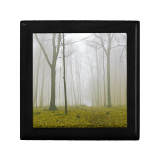 Fantasy forest with fog and yellow foliage gift box