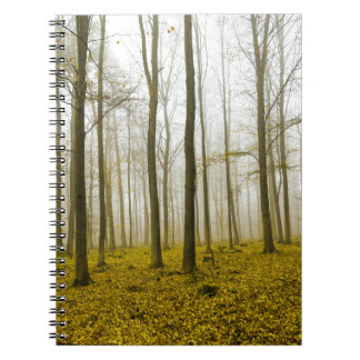 Fantasy forest with fog and yellow leaves notebook