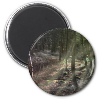 Fantasy Forest with Sunbeams Refrigerator Magnets